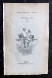 Jardine 1836 Antiuqe Print. Entomology Vol IV Classical Engraved Title Page